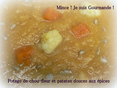 potage_CF_et_patates_douces_1.JPG
